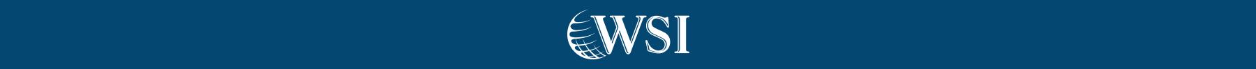 WSI Consultoria